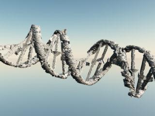 ADN alterat