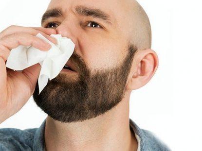 sange din nas