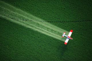 Agricultura intensiva foloseste cantitati mari de ingrasaminte si pesticide