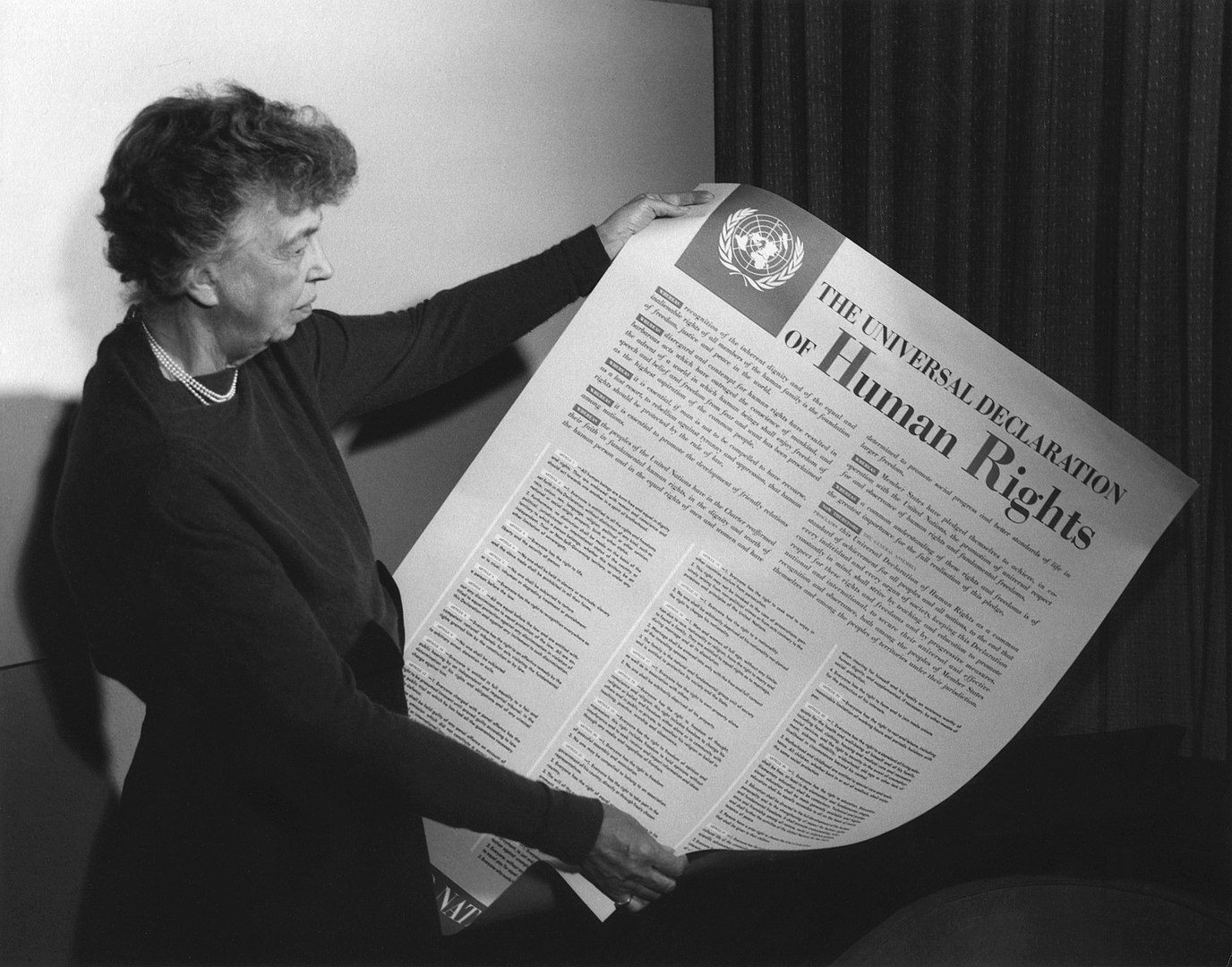 Declaratia Drepturilor Omului
