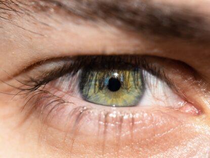 Dezlipirea de retina
